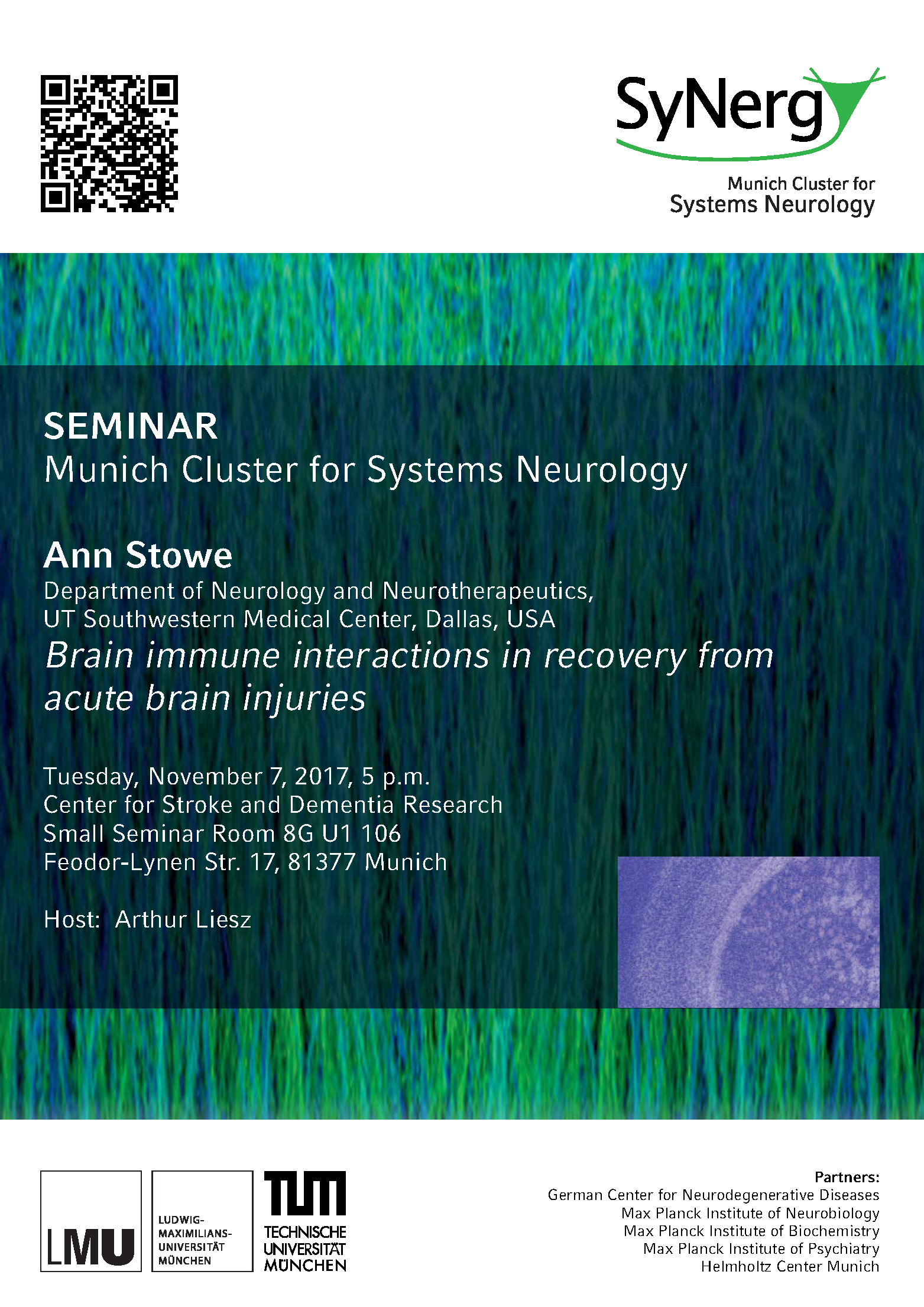 SyNergy Seminar: Ann Stowe - Munich Cluster for Systems